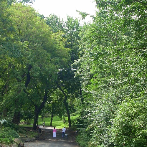 Morningside Park, 25 de agosto de 2009