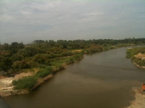 Río Tajo a su paso por Talavera (Foto: C.S.J.)